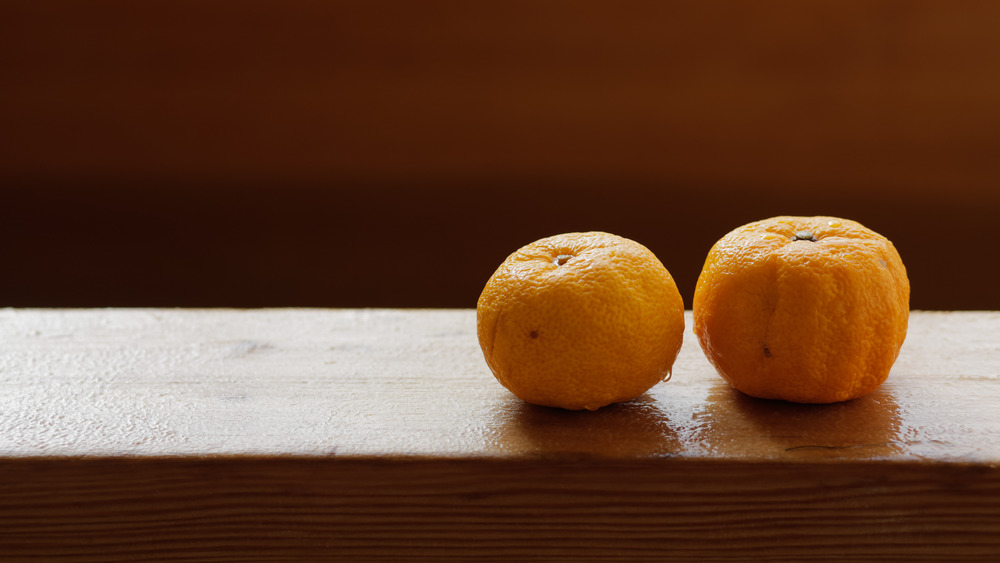 Fruits of yuzu on the edge of a wooden bath at Japanese onsen. Bath with yuzu, also known as yuzuyu and yuzuburo, traditionally taken during winter solstice, a custom that dates to early 18th century.
